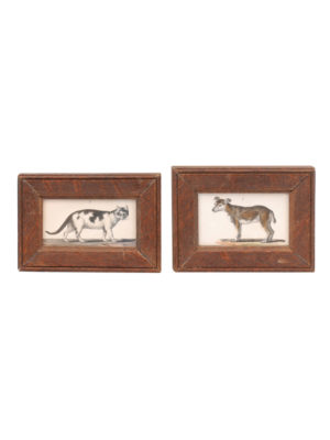 Framed Cat & Dog Engravings 18th Century