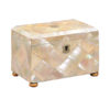 19th Centuy English Mother of Pearl Tea Caddy