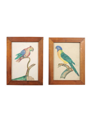 Pair 19th Century Watercolor Birds