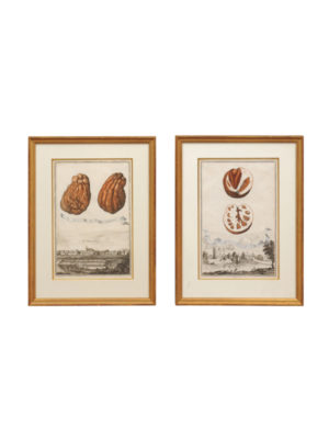 Pair Gilt Framed Engravings of Fruit & European Villages