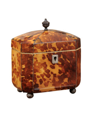 Petite 19th Century English Tortoiseshell Tea Caddy