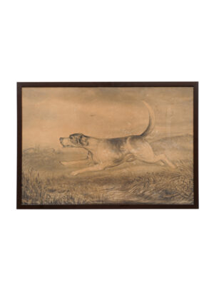 Framed 19th Century English Hound Dog Watercolor